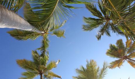 Dominikánská republika – divukrásná dovolená v Karibiku